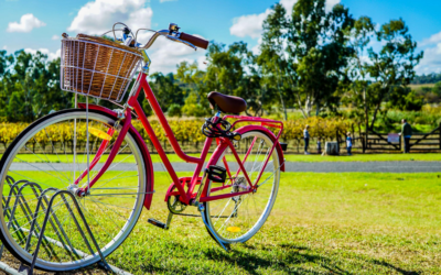Tecno Diamant aderisce al Bike to Work